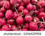 Bunch of radishes. freshly...