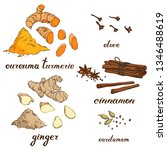 vector set of spices   turmeric ... | Shutterstock .eps vector #1346488619