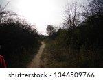 family tour. dog walking | Shutterstock . vector #1346509766