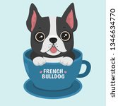 Stock vector vector icon puppy dog breed french bulldog pet dog black sits in the blue cup illustration 1346634770