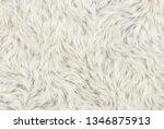 soft shaggy fleece background | Shutterstock . vector #1346875913