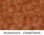 softy fleece shaggy animal skin | Shutterstock . vector #1346876669