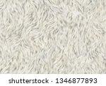 soft fleece shaggy animal skin | Shutterstock . vector #1346877893