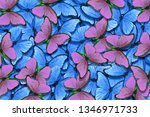 Stock photo soft blue and pink natural textural background wings of a butterfly morpho flight of bright 1346971733