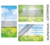 vector brochure layout design... | Shutterstock .eps vector #134709950