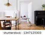 stylish scandi interior of home ... | Shutterstock . vector #1347125303