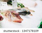 fresh fish at a fishmonger | Shutterstock . vector #1347178109