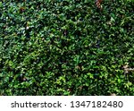 background wallpaper content | Shutterstock . vector #1347182480