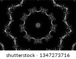 abstract black and white... | Shutterstock .eps vector #1347273716