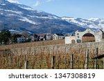 liechtenstein  vaduz   january... | Shutterstock . vector #1347308819
