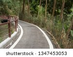 small road by trees with nobody ... | Shutterstock . vector #1347453053