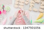 step by step. flat lay.... | Shutterstock . vector #1347501056