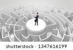 businessman standing on the top ...   Shutterstock . vector #1347616199