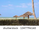 beautiful beach huts on a... | Shutterstock . vector #1347796160