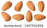 almond raw piece collection set.... | Shutterstock . vector #1347931856