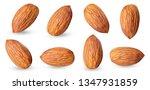 almond raw piece collection set.... | Shutterstock . vector #1347931859