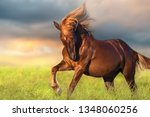 Red Horse With Long Blond Mane...