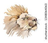 exotic lion wild animal in a... | Shutterstock . vector #1348064063