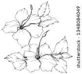 vector hibiscus floral... | Shutterstock .eps vector #1348084049