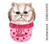 white persian cat watercolor... | Shutterstock . vector #1348142453
