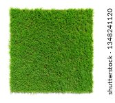 square shaped green grass lawn  ... | Shutterstock . vector #1348241120