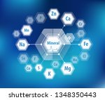 all minerals for human health.... | Shutterstock .eps vector #1348350443