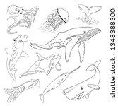 vector illustration of sea... | Shutterstock .eps vector #1348388300