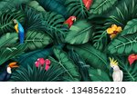 tropical plants and birds... | Shutterstock .eps vector #1348562210