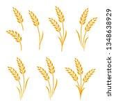 hand drawn set of golden wheat... | Shutterstock .eps vector #1348638929