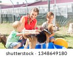family washing dog in pool of... | Shutterstock . vector #1348649180