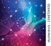 fractal white outline... | Shutterstock .eps vector #1348704920