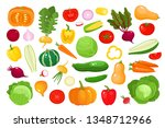 bright vector illustration of... | Shutterstock .eps vector #1348712966