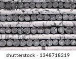 texture trees of birch firewood ...   Shutterstock . vector #1348718219