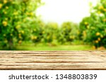 desk of free space for your... | Shutterstock . vector #1348803839