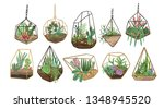 collection of succulents ... | Shutterstock .eps vector #1348945520