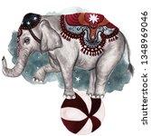 Vintage Circus Elephant...