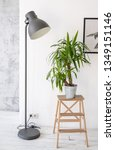 potted palm plant on a wooden... | Shutterstock . vector #1349151146