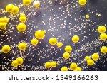 bacteria grown from skin smear  ... | Shutterstock . vector #1349166263