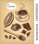 cocoa and chocolate set. ink... | Shutterstock .eps vector #1349203010