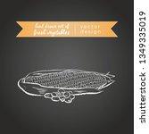 maize. set of fresh vegetables  ... | Shutterstock .eps vector #1349335019