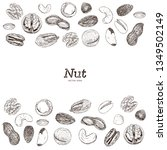 nut and seed collection  hand... | Shutterstock .eps vector #1349502149