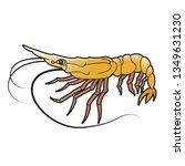 shrimp vector illustration...   Shutterstock .eps vector #1349631230
