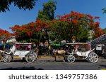 guadalajara  jalisco mexico  ...   Shutterstock . vector #1349757386