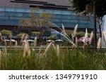 guadalajara  jalisco mexico  ...   Shutterstock . vector #1349791910