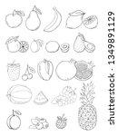 vector sketch hand drawn fruits ...   Shutterstock .eps vector #1349891129