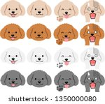 Toy Poodle Of Various...
