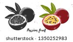 vector engraved style...   Shutterstock .eps vector #1350252983