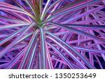 abstract background with bright ...   Shutterstock . vector #1350253649
