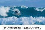 Pro Surfer Dude Surfing Fun...