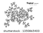 tropical leaves drawing... | Shutterstock .eps vector #1350865403